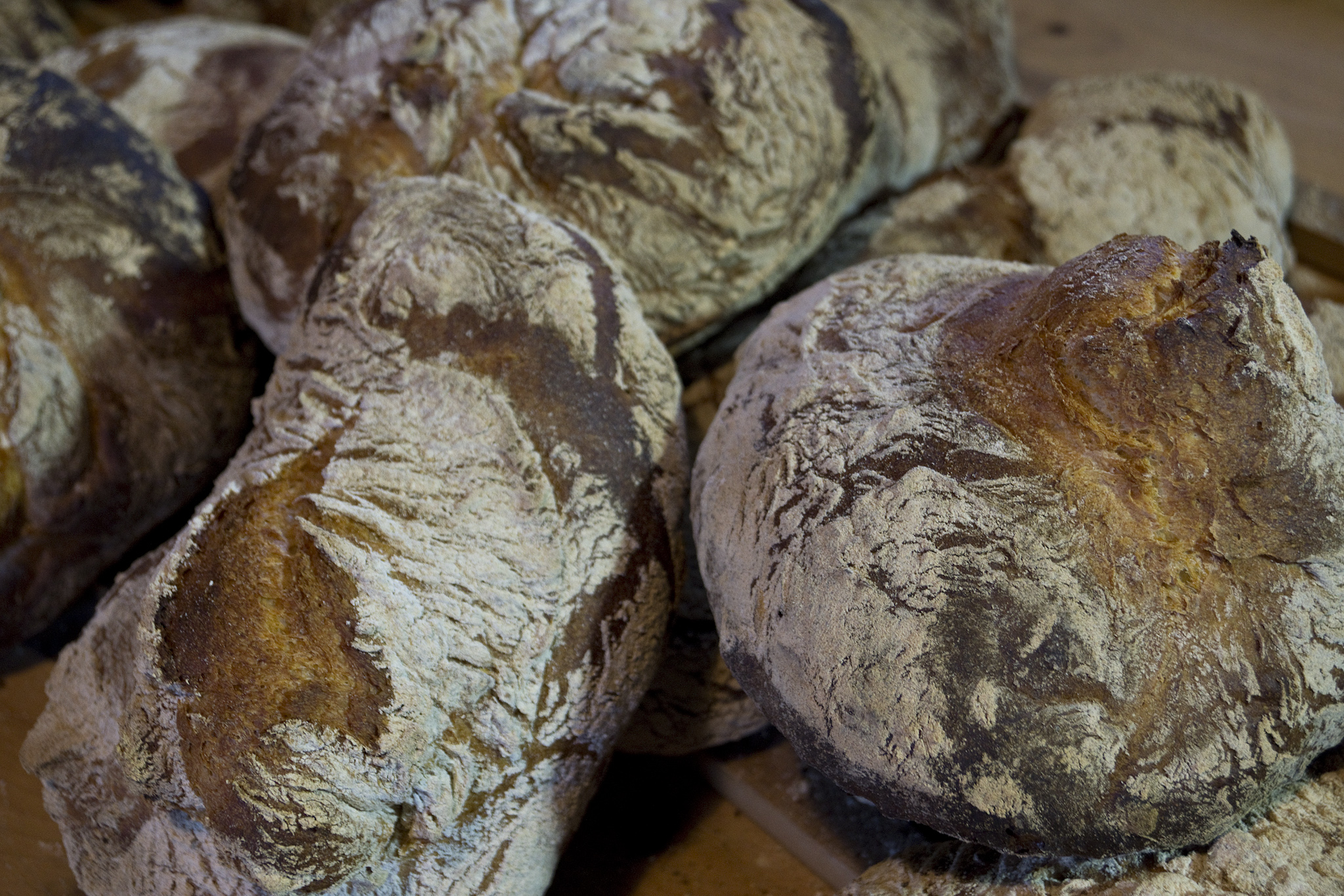 130222-ofenhausried_dinkelbrot-backen_120